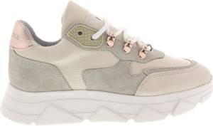 Steve Madden PICANTE - Sneakers laag - beige/goud - Maat: 39